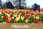 Toronto Festivals